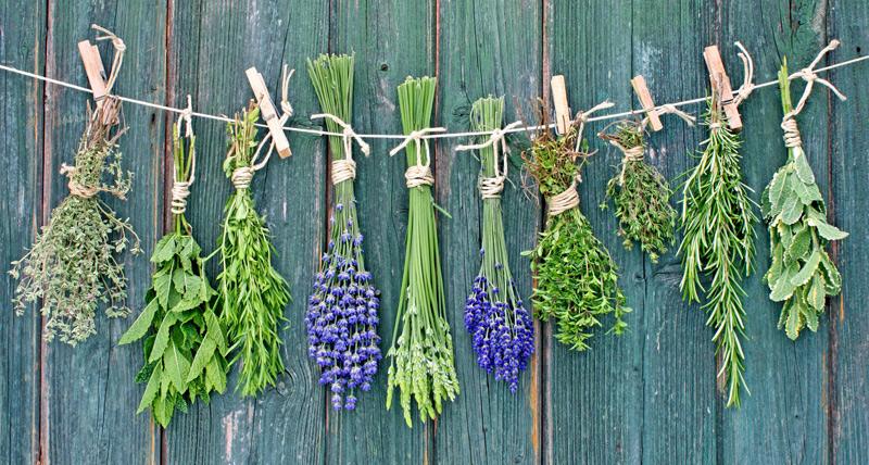 Купить сборы лечебных трав в Хабаровске