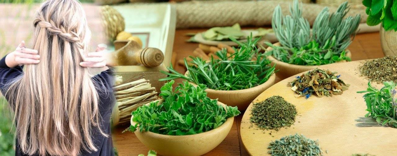 Купить лечебные трабы для изготовления натуральных масок для волос