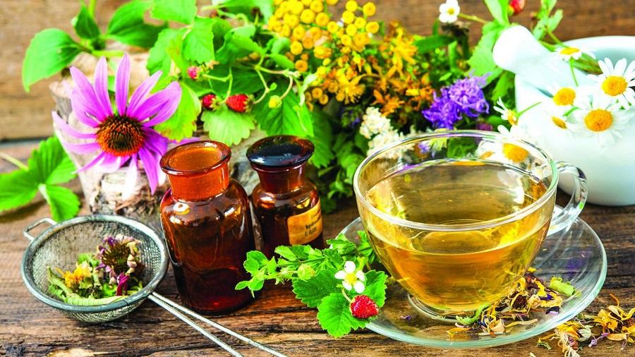 Купить лечебные травы в Хабаровске для лечения болезней уха, горла и носа