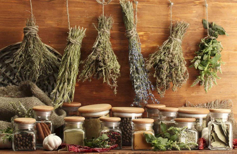 Купить лекарственные травы и другие сборы лекарственных трав для женского здоровья и похудания в интернет-магазине лекарственных трав