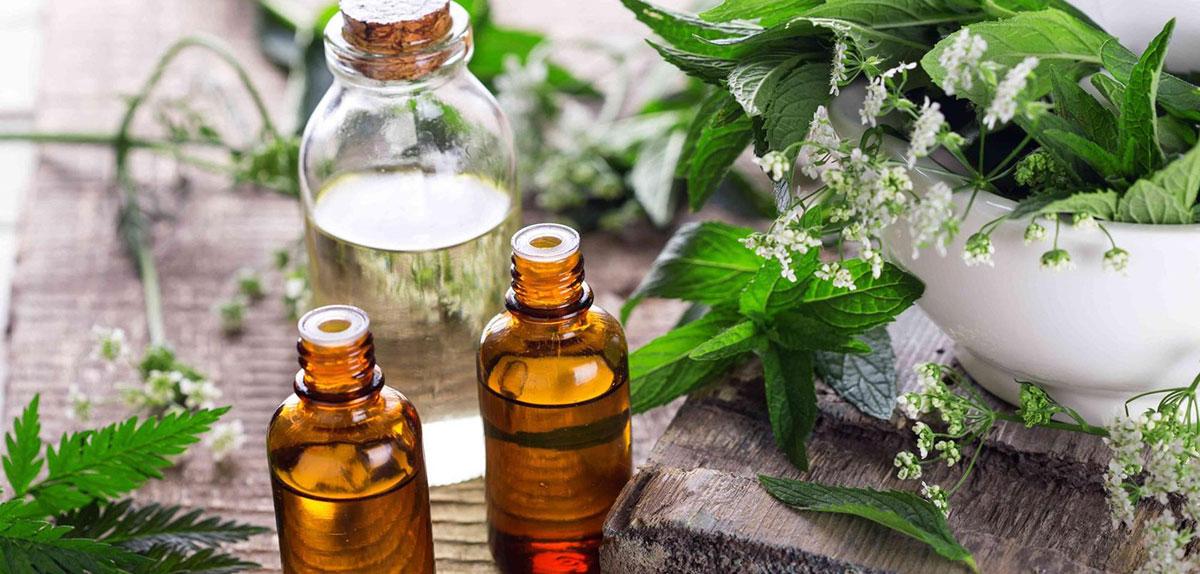 Лечебные травы и ароматические масла для бани – свойства и особенности