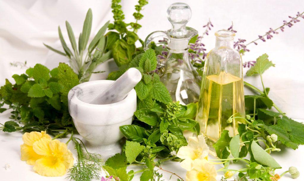 Купить лечебные травы в интернет магазине